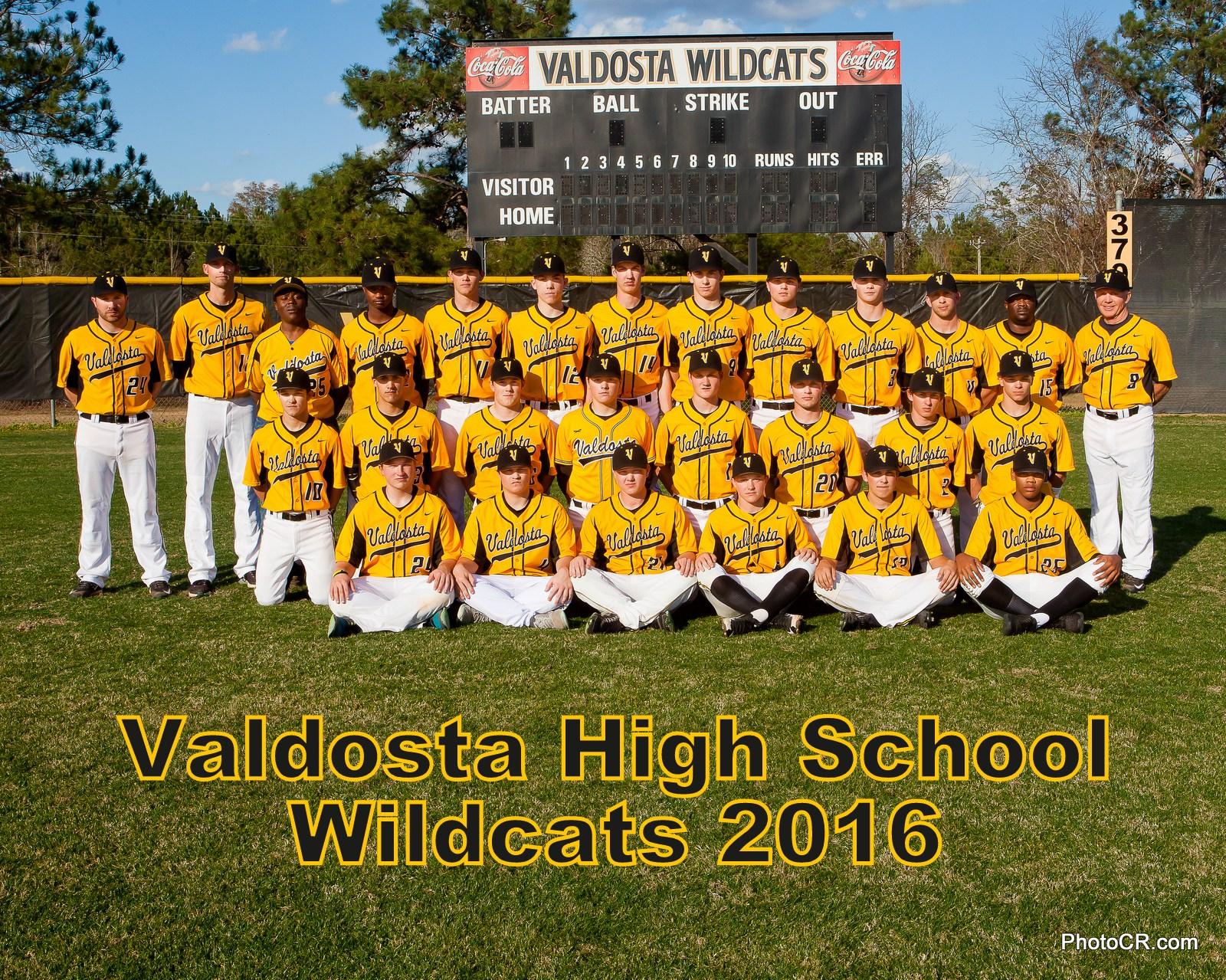 2017 VHS Wildcat Baseball Team