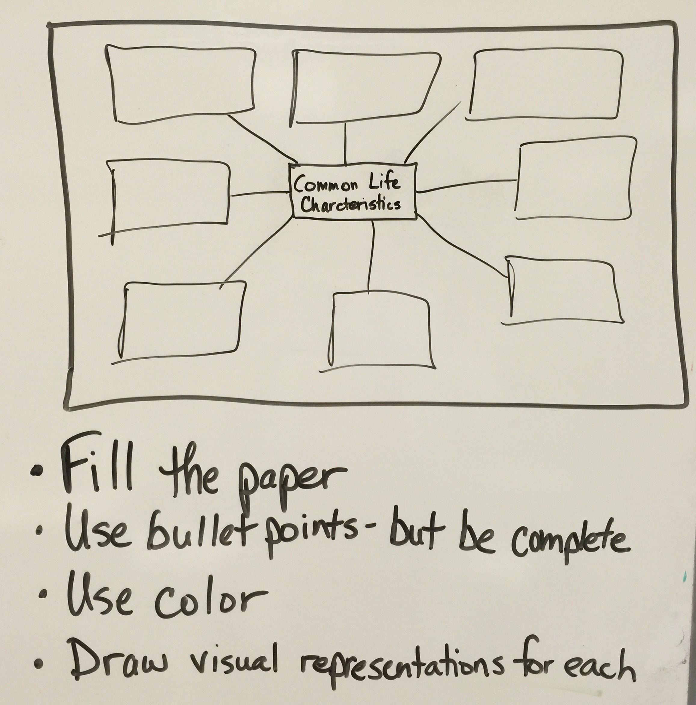 La mirada high school charcteristics of life graphic organizer sampleg pooptronica