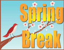 An image of a bird on a tree signifying spring breakk