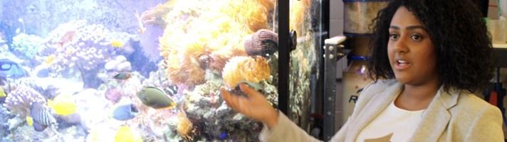 Student at Aquarium