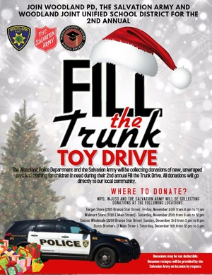 Fill the Trunk Flyer