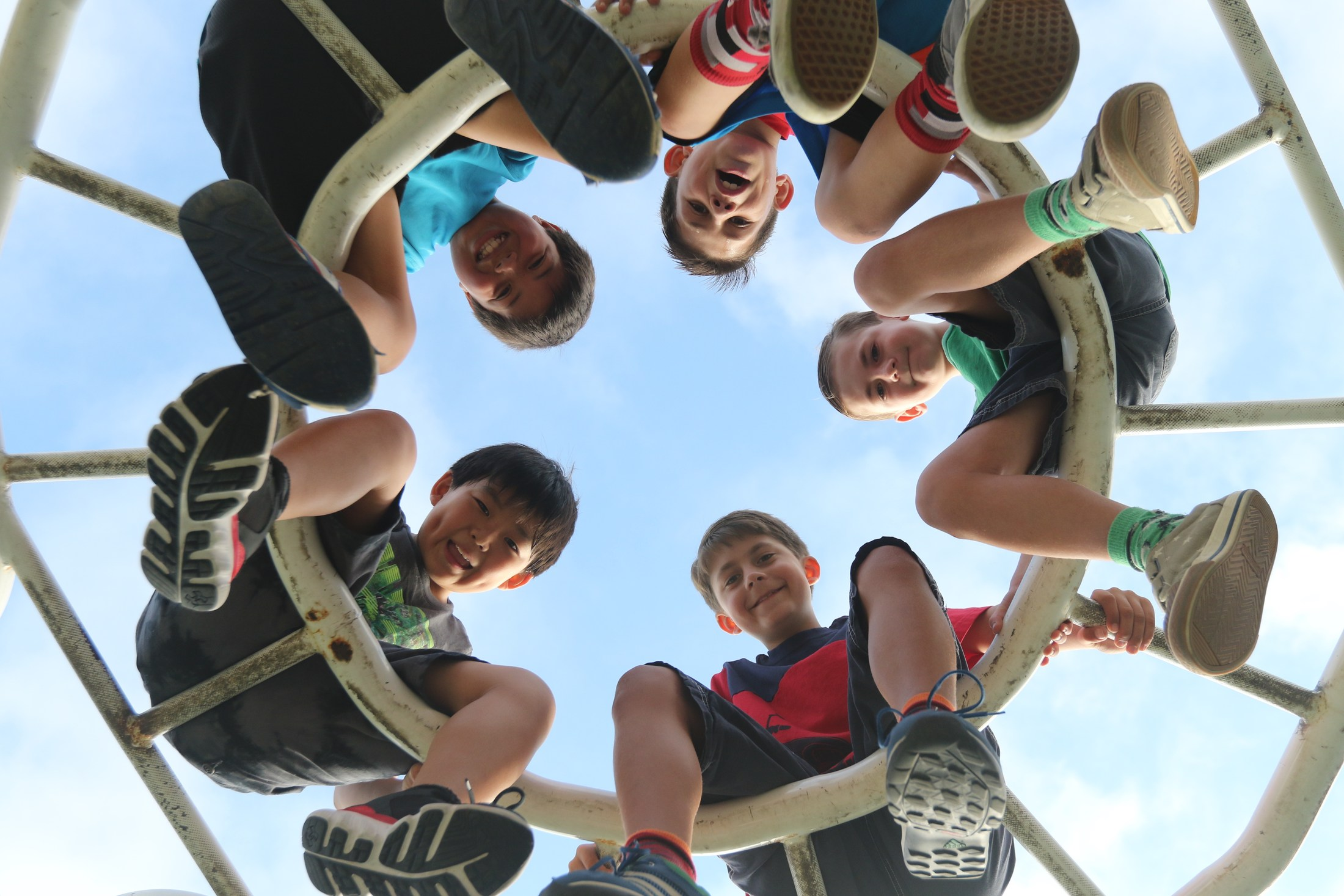 a group of students looking down from the top of jungle gym