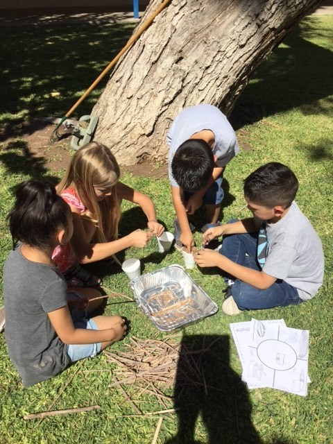 2nd grade builds beaver dams as STEM projects! Thumbnail Image