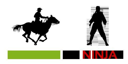 Cowboy vs Ninja