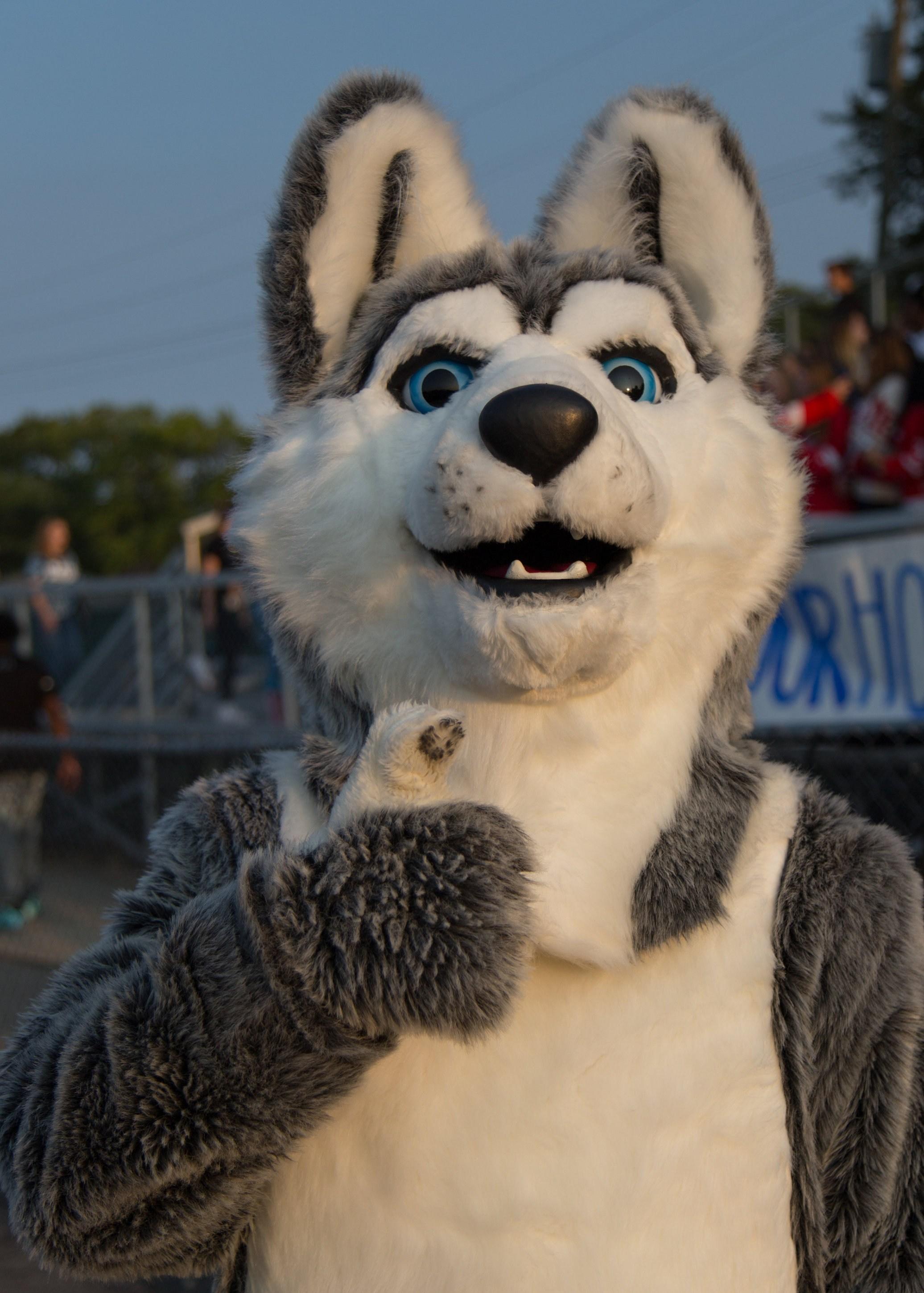 Husky Mascot