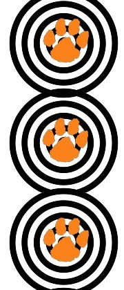 Bearcat Pool logo
