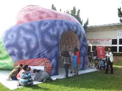 """Northrup Elementary students walk through a giant inflatable brain and learn about its functions as part of the """"Love Your Brain Now Tour."""""""
