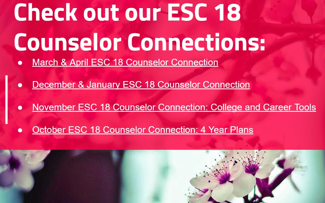 ESC18 Counselor Connections