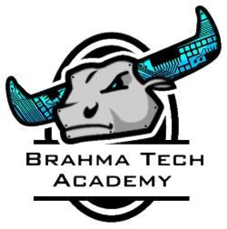 Brahma Tech Logo 2 cyborg_DB.jpg