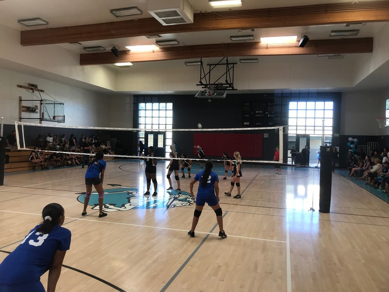 Girls Volleyball won it's game 2-0 versus Acacia