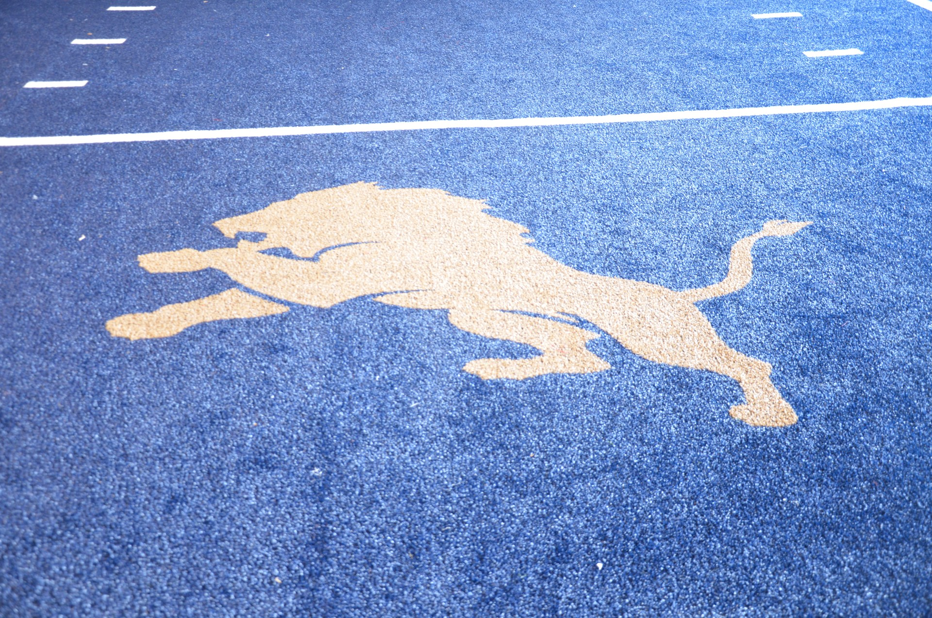 Picture of Lions logo on turf in Coach Paternostro Training Center