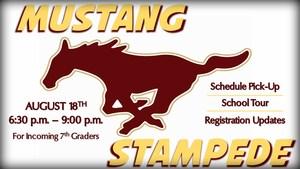 Mustang Stampede 1.jpg