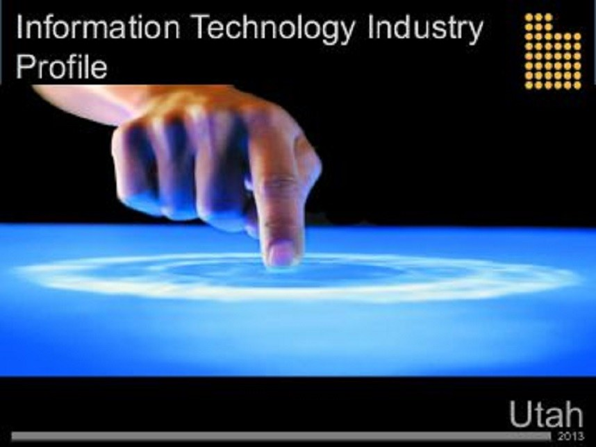 Information technology profile