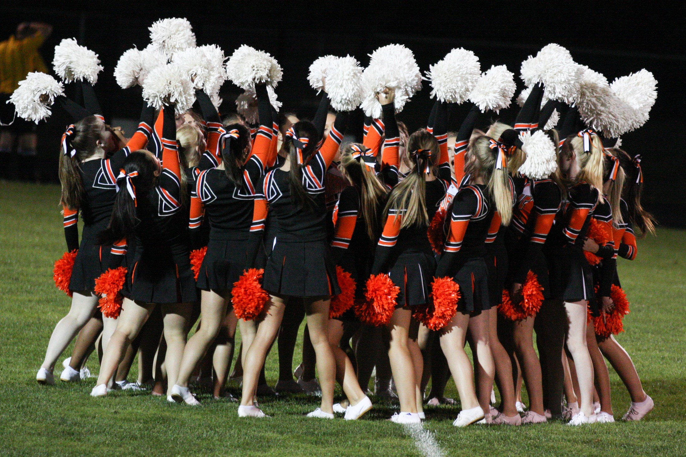 Mustang Pompon