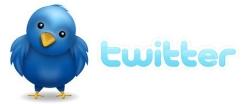 twitter-logo-cute-bird.jpg