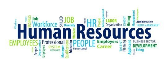 Word Cloud: Human Resources and related words