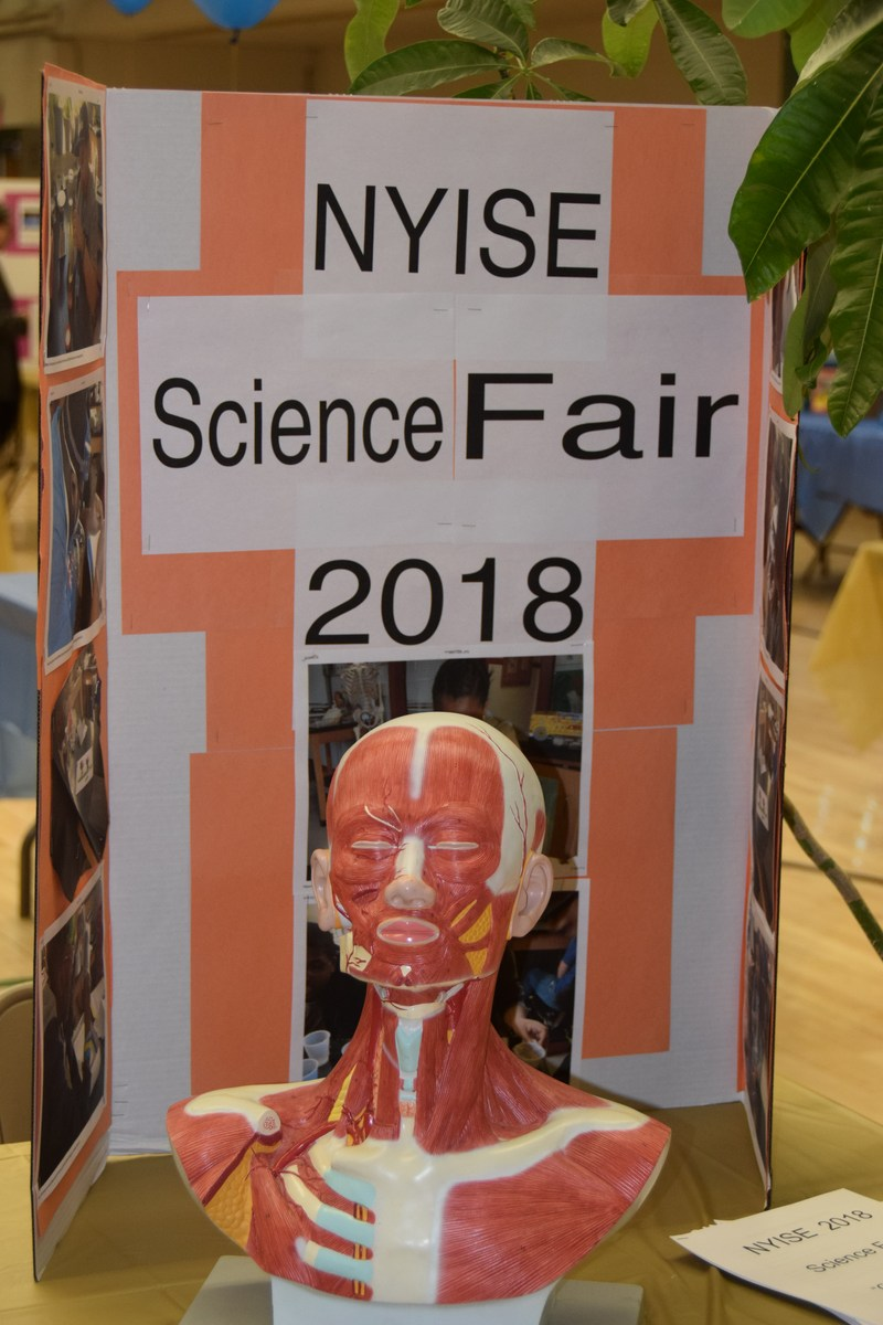NYISE Science Fair sign with medical display of upper body