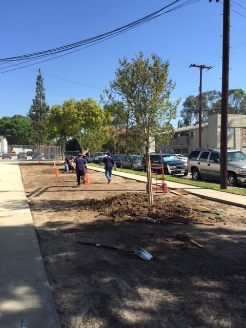 Preparing ground at the district office