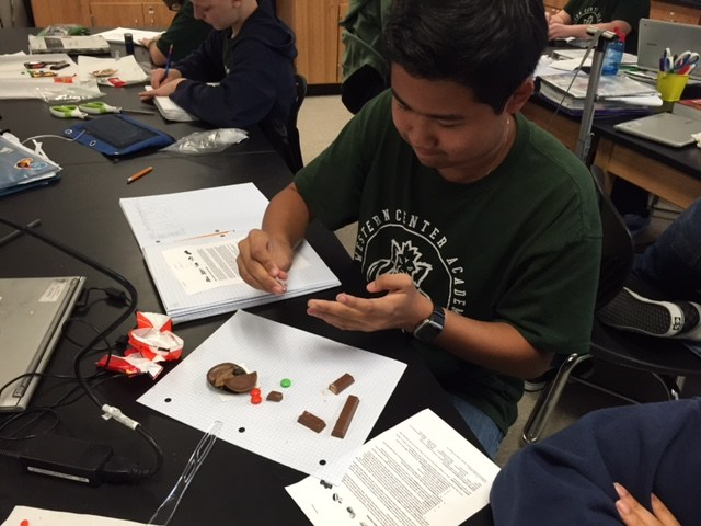 Ninth grade biologists have begun studying the diversity of life and how it can be classified to show evolutionary relationships.