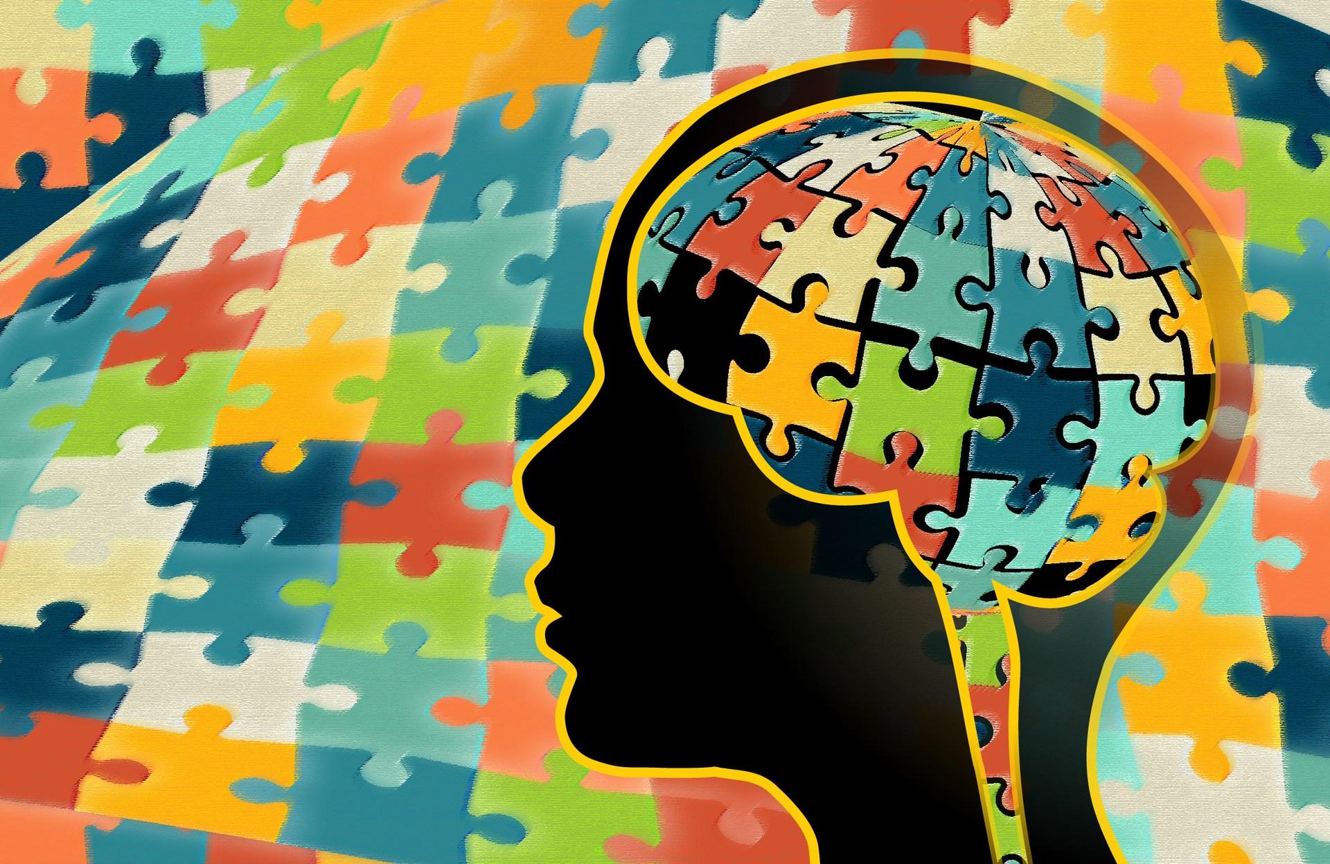 The Autism Model