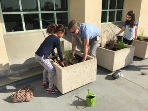 New planter boxes at Beverly Vista