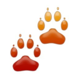 red gold paw print.jpg
