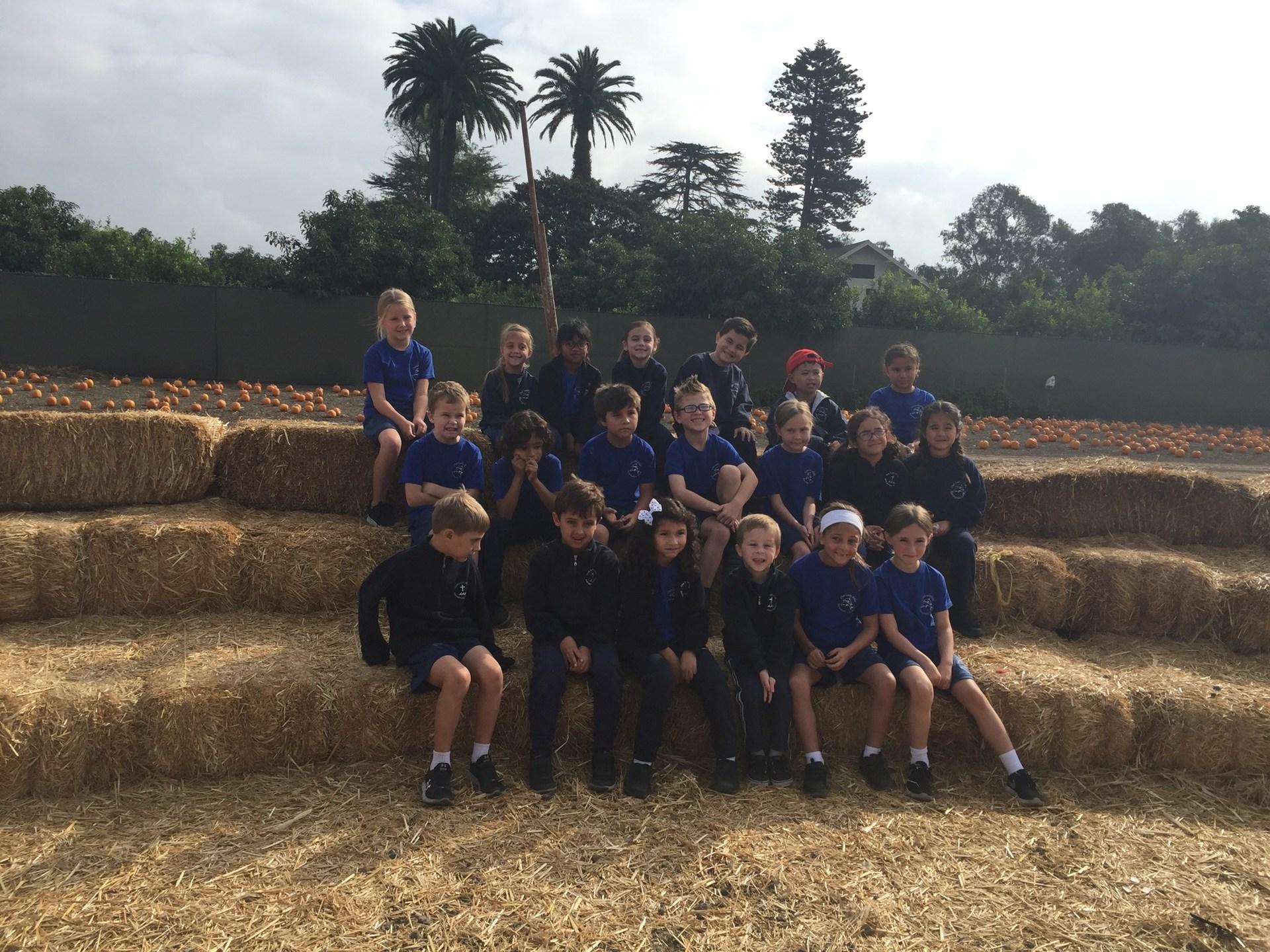 Field trip to the pumpkin patch