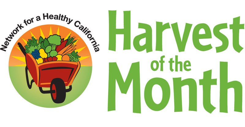 Harvest of the Month - Kiwi Featured Photo