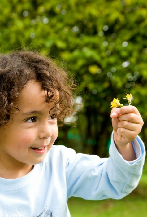 boy holding flower outside in grass