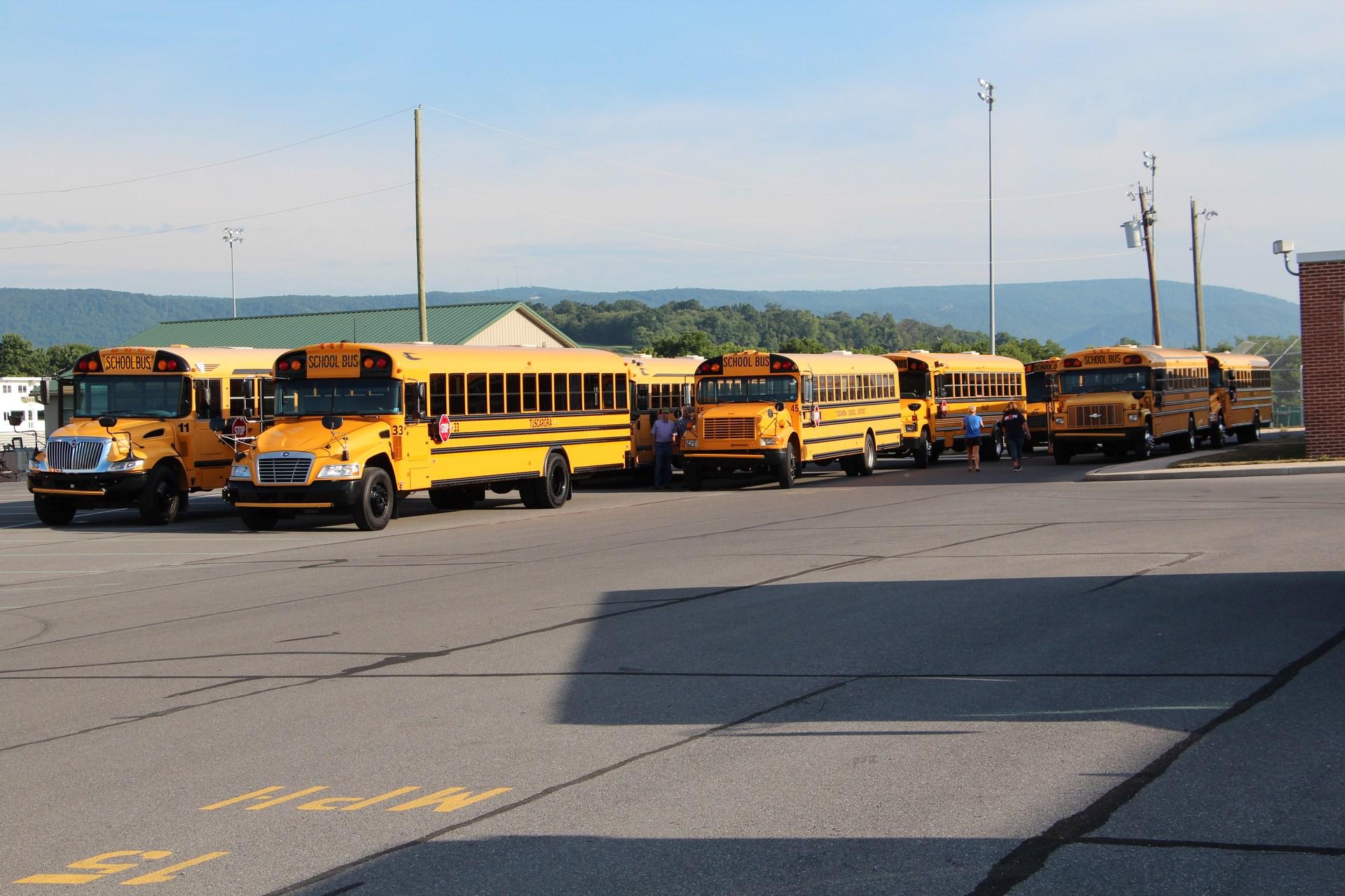 TSD Bus Fleet 2