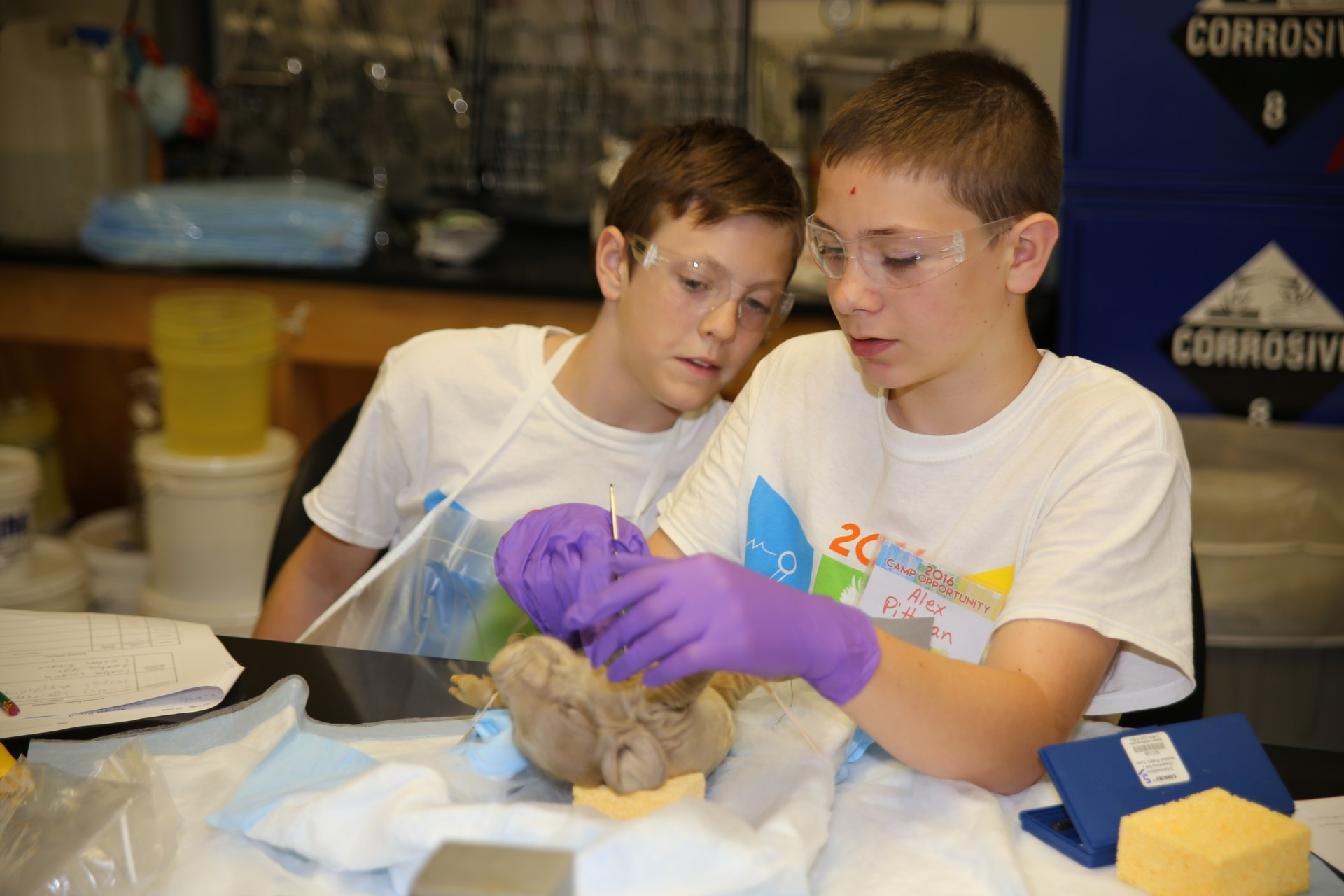 Students participate in Biology activities at Camp Opportunity