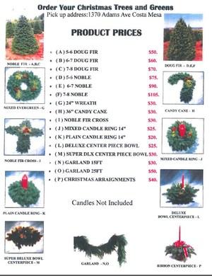 Christmas tree fundraiser 2015.JPG