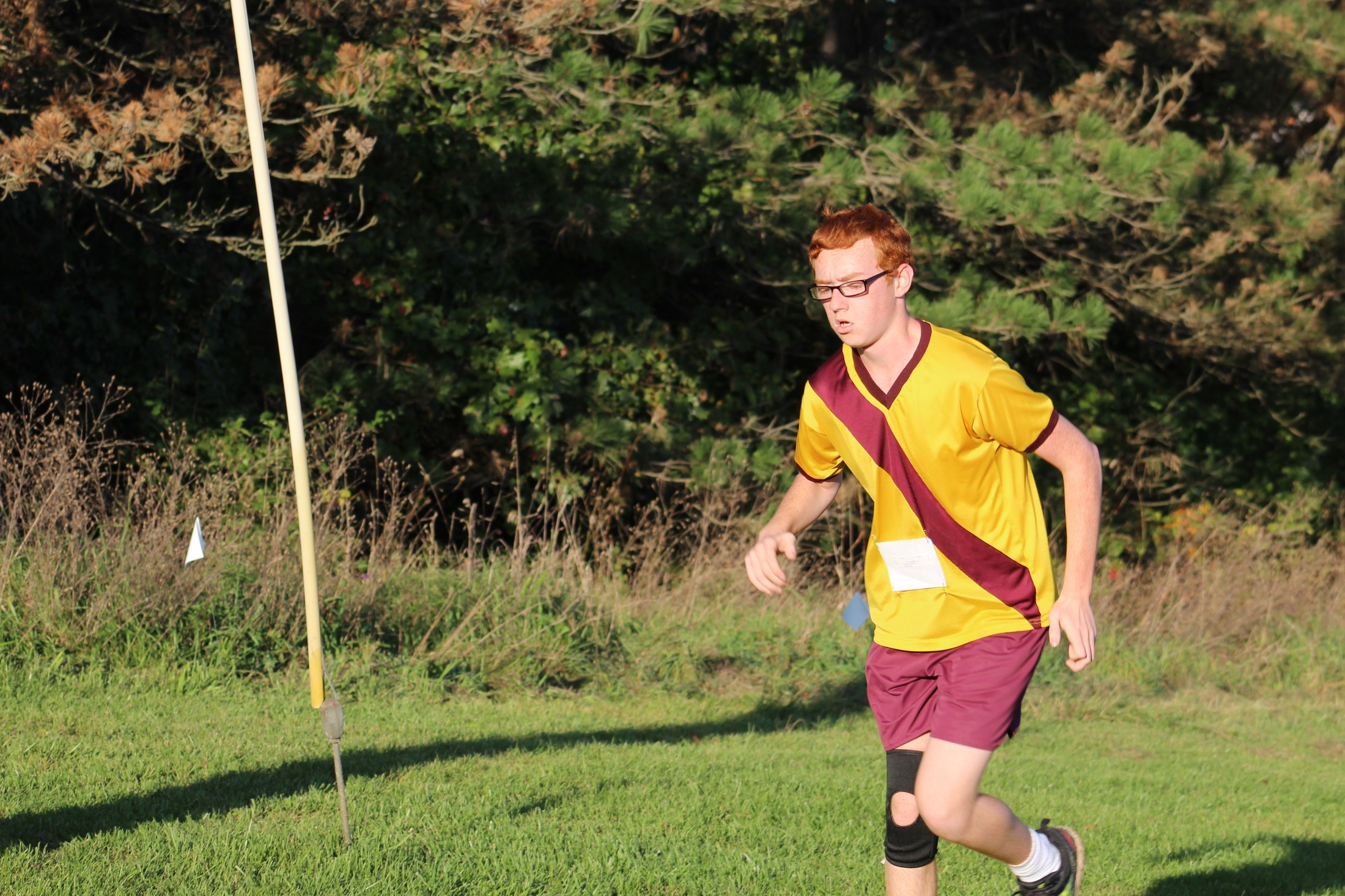Brandywine Cross Country