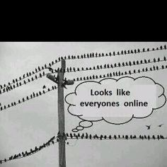 Looks like we are all online