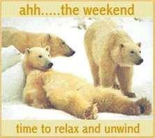 bear weekend.jpg