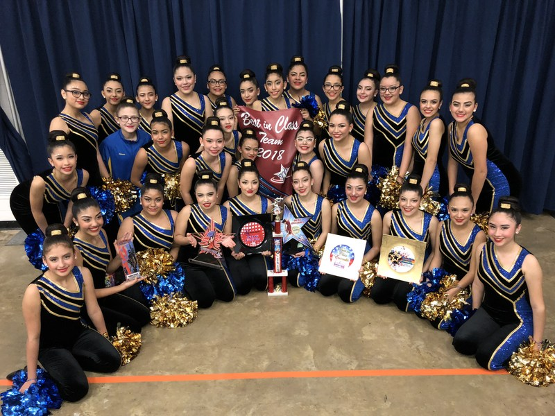 Valley View Junior High and Early College Campus Tigerettes Dance Team competed at the American Dance/ Drill Team Contest on Saturday, February 9, 2018. Thumbnail Image