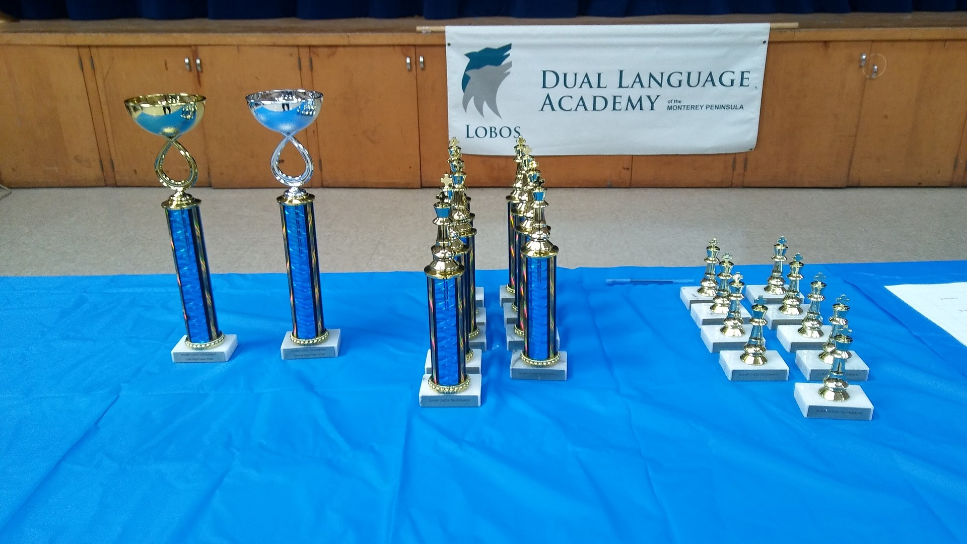 Trophies for the Third Annual DLAMP Chess Tournament.