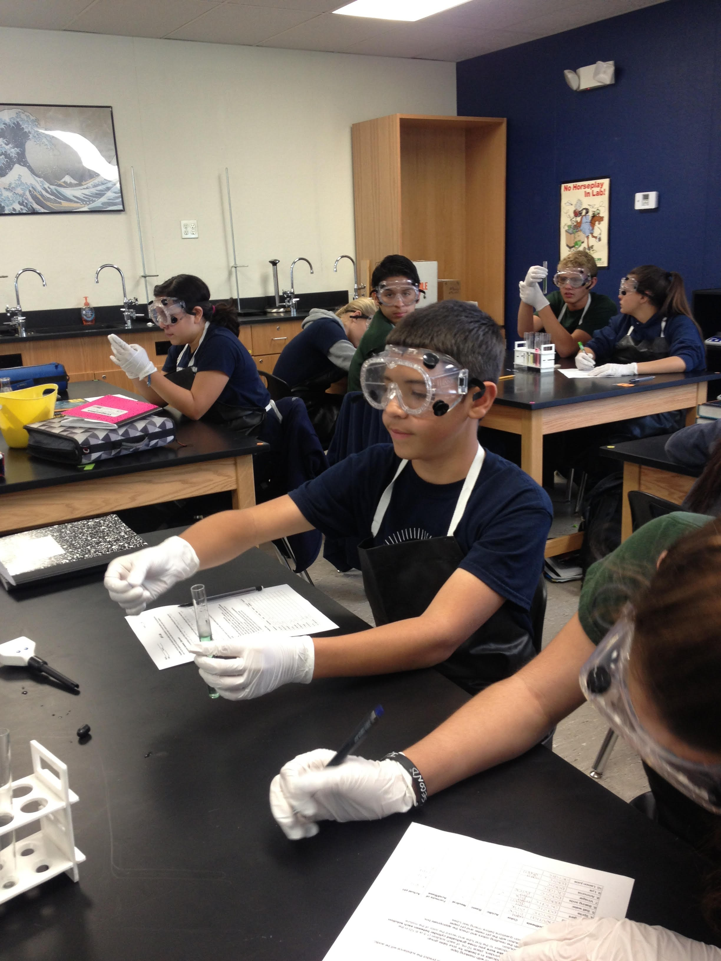 The ninth graders look hard at work testing out acids and bases in Mrs. Vargas' chemistry lab.