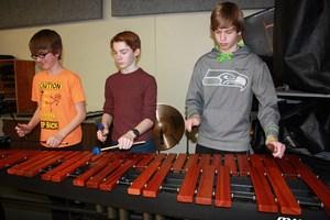 CMS Marimba instrument web.jpg