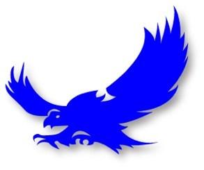 Ffalcon Flying logo blue.jpg