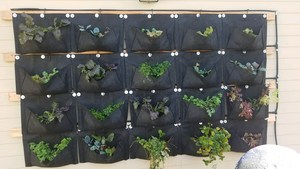 A student-made planter on the wall.