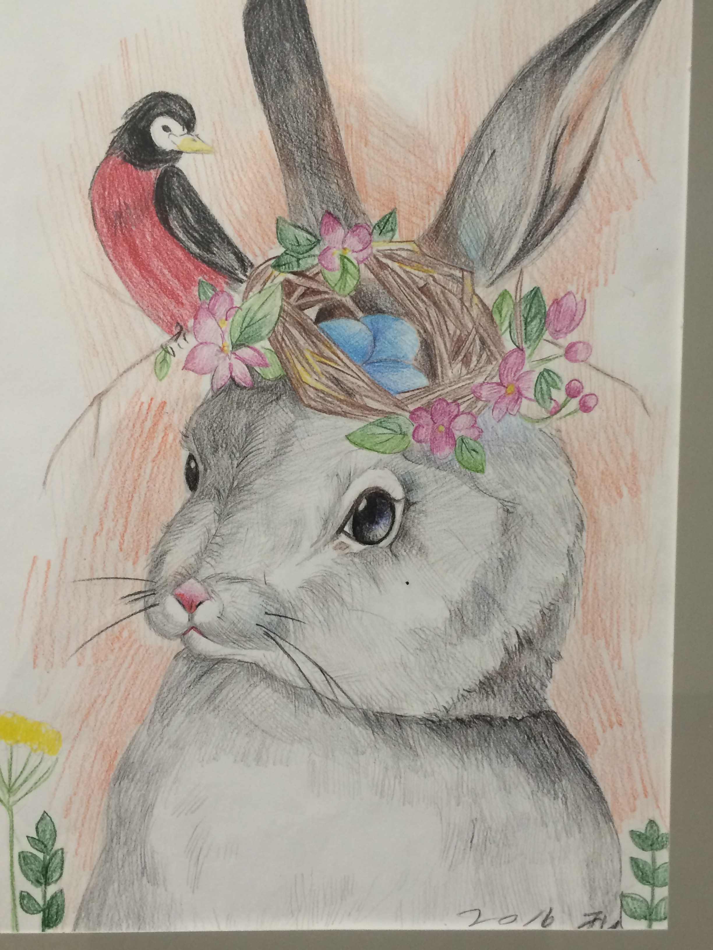 art student's rabbit sketch