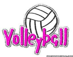 volleyball with volleyball words in pink glitter