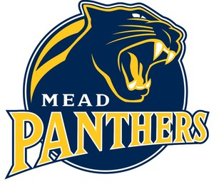 2015_PANTHER_LOGO_GOLD.jpg