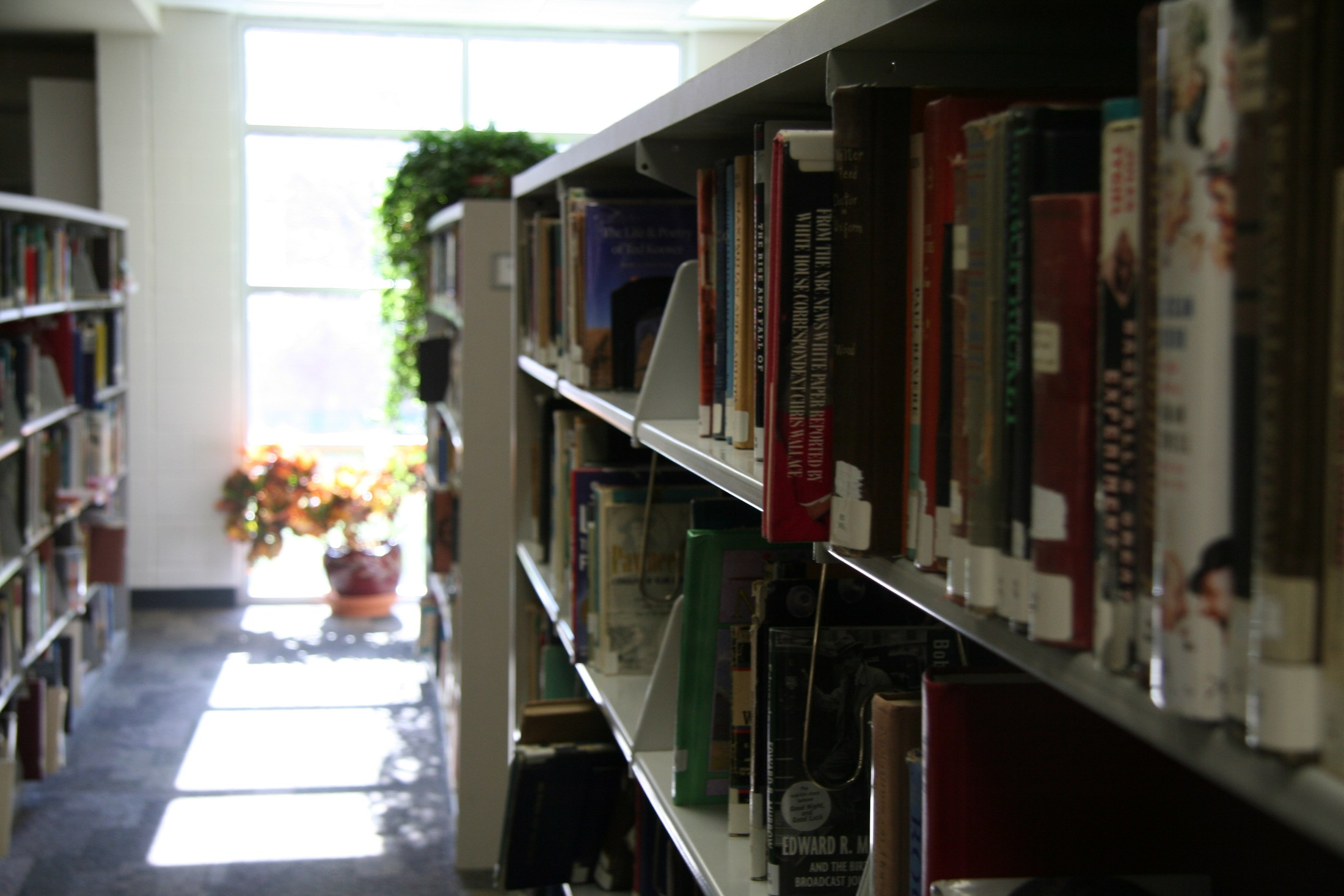 Out of focus book shelf