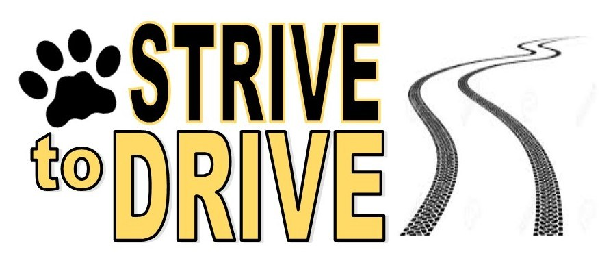 strive to drive