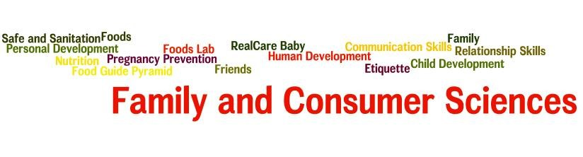 Topics Covered in Family and Consumer Science Classes