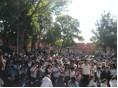 Crowd Turkey Trot.jpg