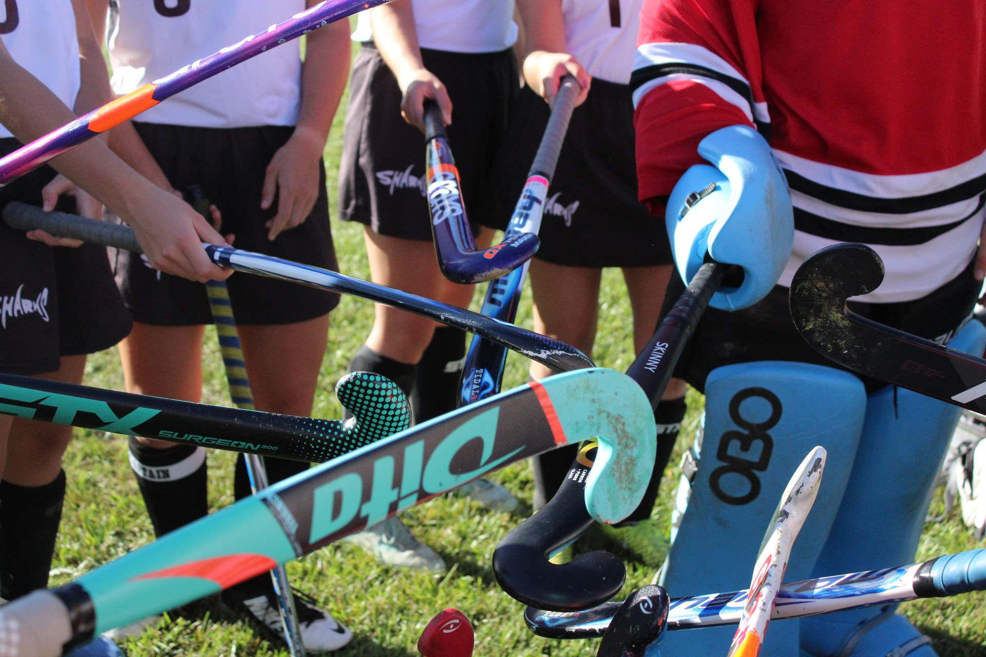 field hockey sticks huddle
