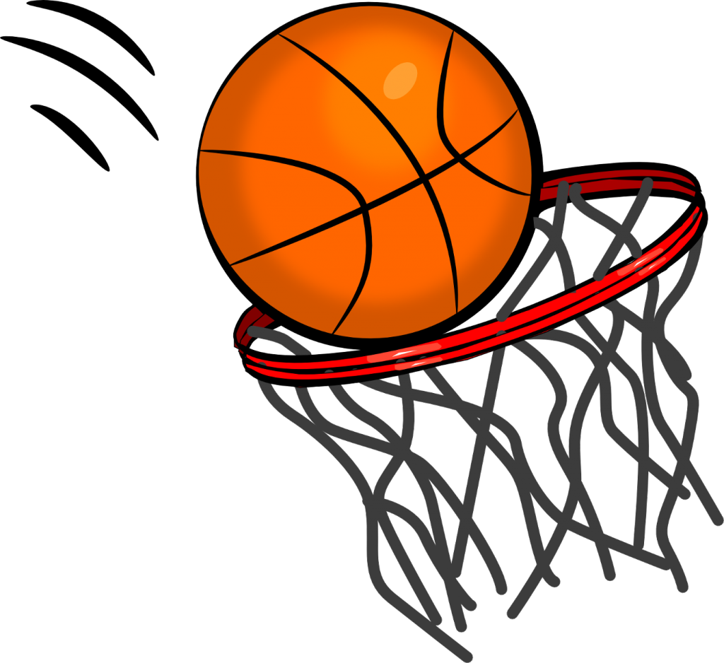 Ball in the Net Image